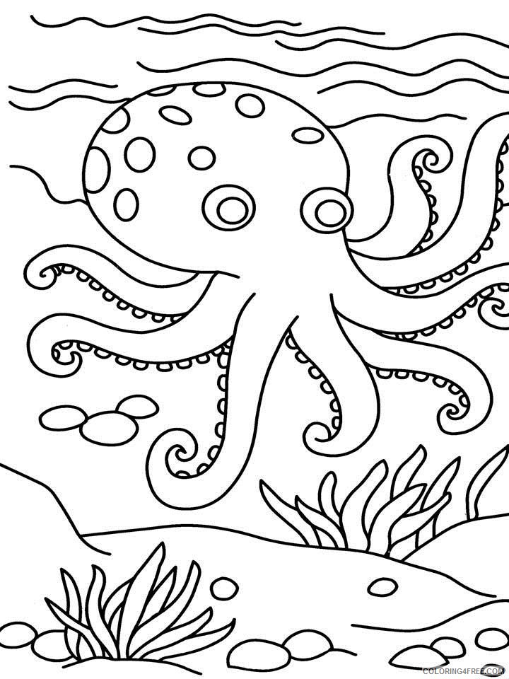 octopus coloring pages for kindergarten Coloring4free