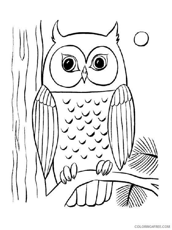owl coloring pages night moon Coloring4free