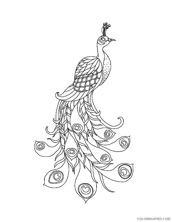 peacock bird coloring pages to print Coloring4free