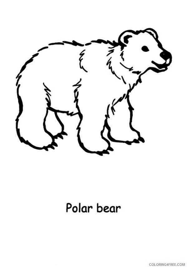 polar bear coloring pages printable for kids Coloring4free