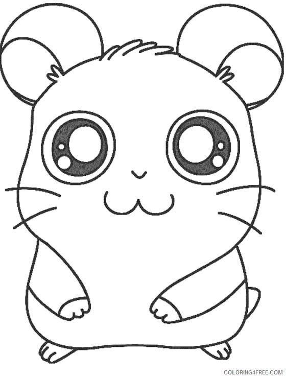 printable hamster coloring pages for kids Coloring4free