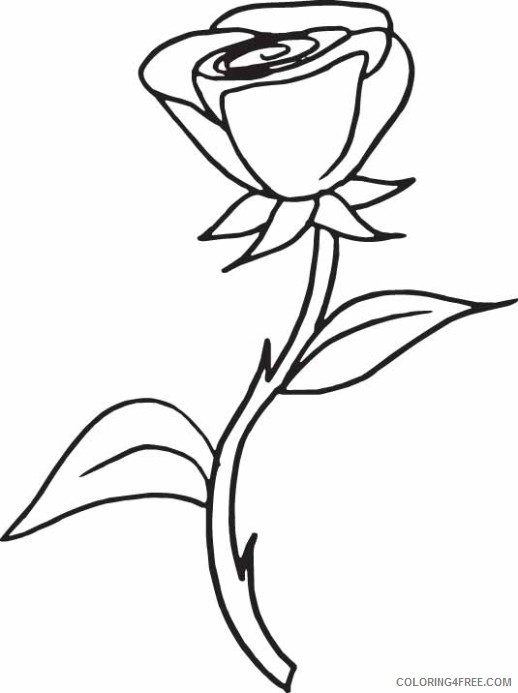 printable rose coloring pages for kids Coloring4free