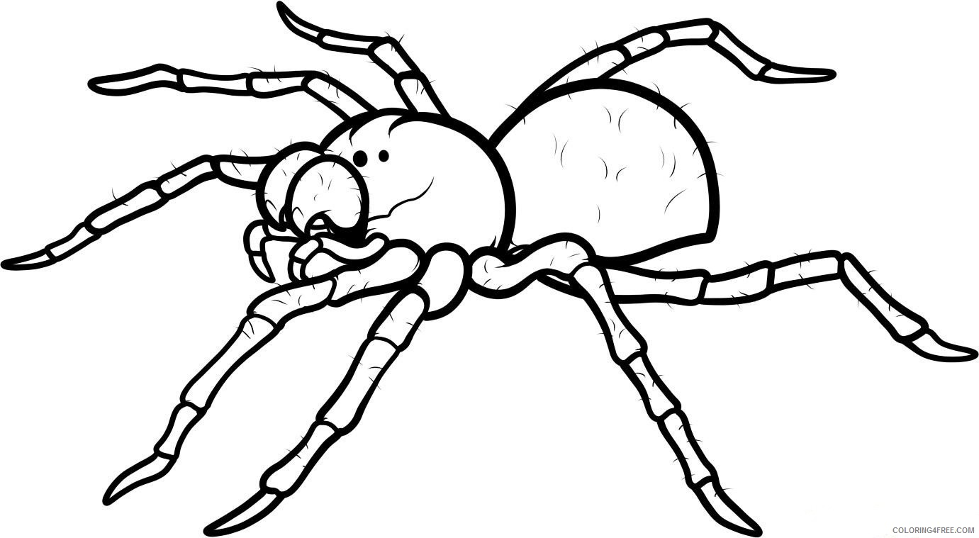 printable spider coloring pages Coloring4free