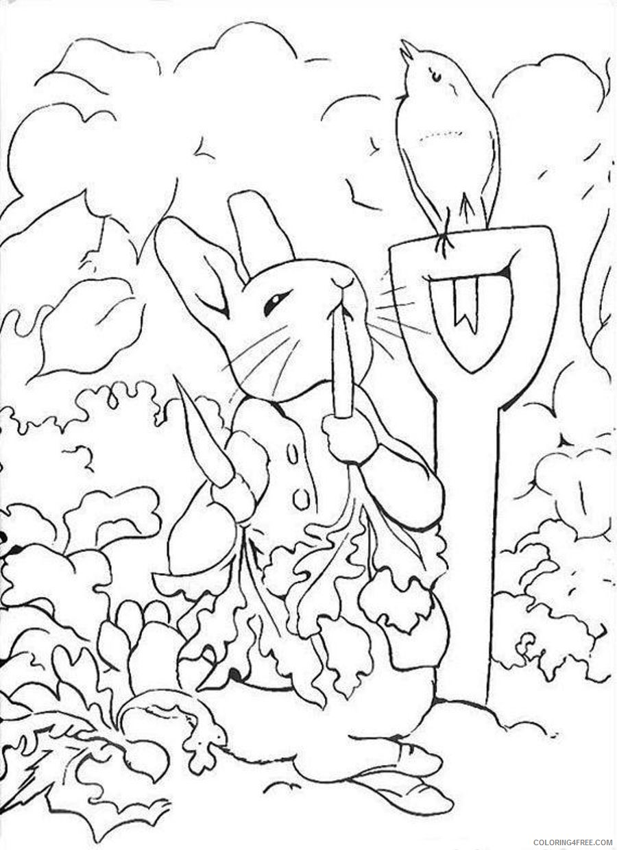 rabbit coloring pages in vegetable garden Coloring4free