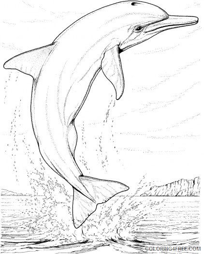 realistic dolphin coloring pages jumping out of water Coloring4free