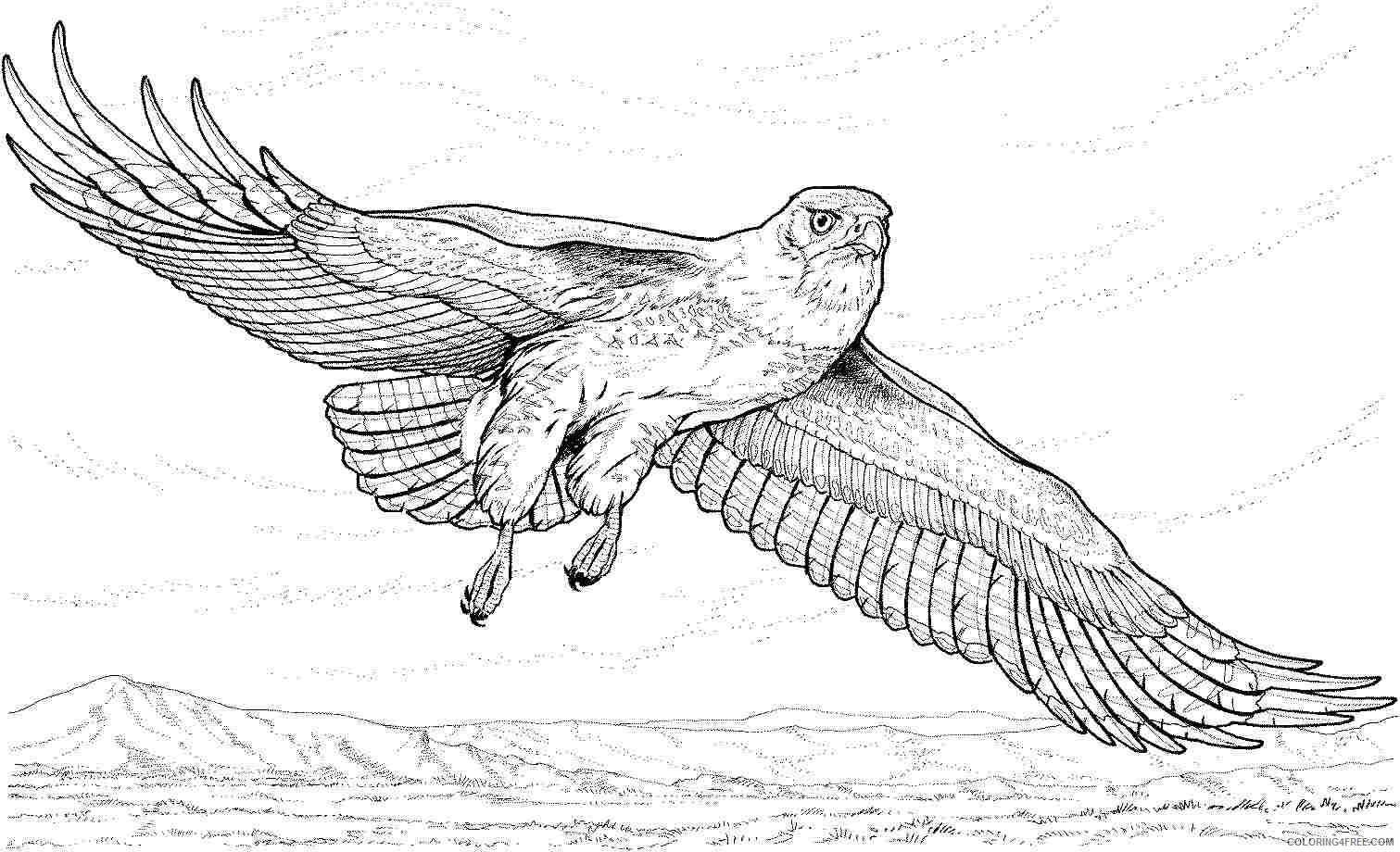 realistic eagle coloring pages flying Coloring4free