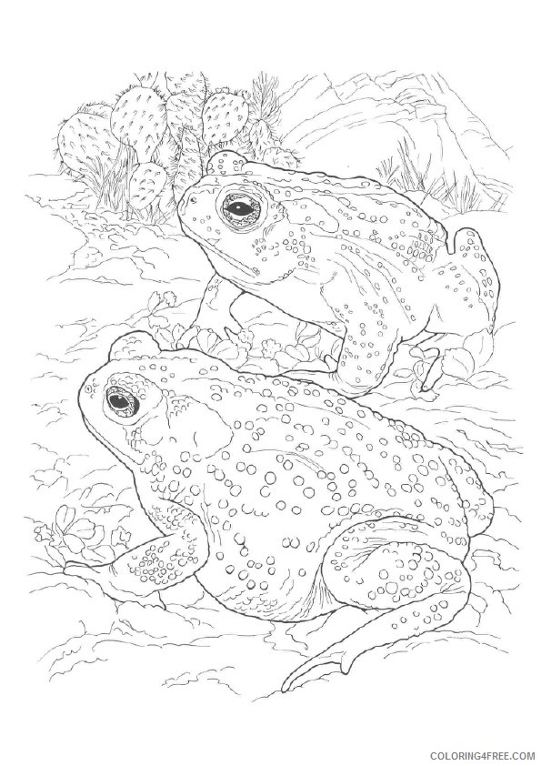 realistic frog coloring pages for adults Coloring4free