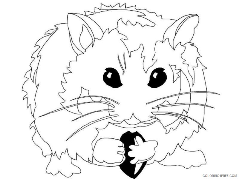 realistic hamster coloring pages Coloring4free