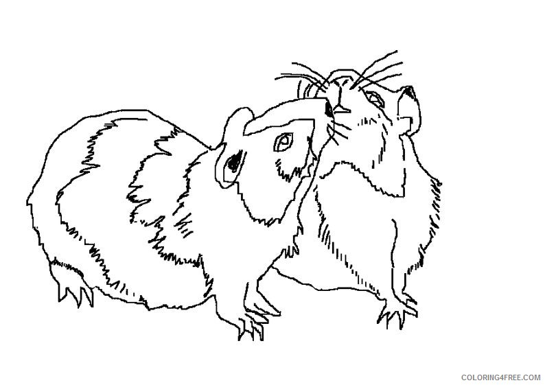 realistic hamster coloring pages couple Coloring4free