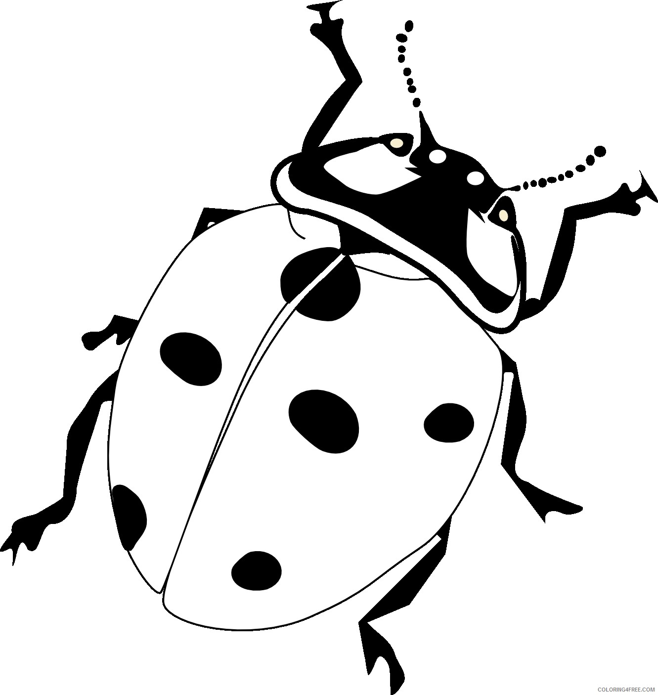 realistic ladybug coloring pages Coloring4free