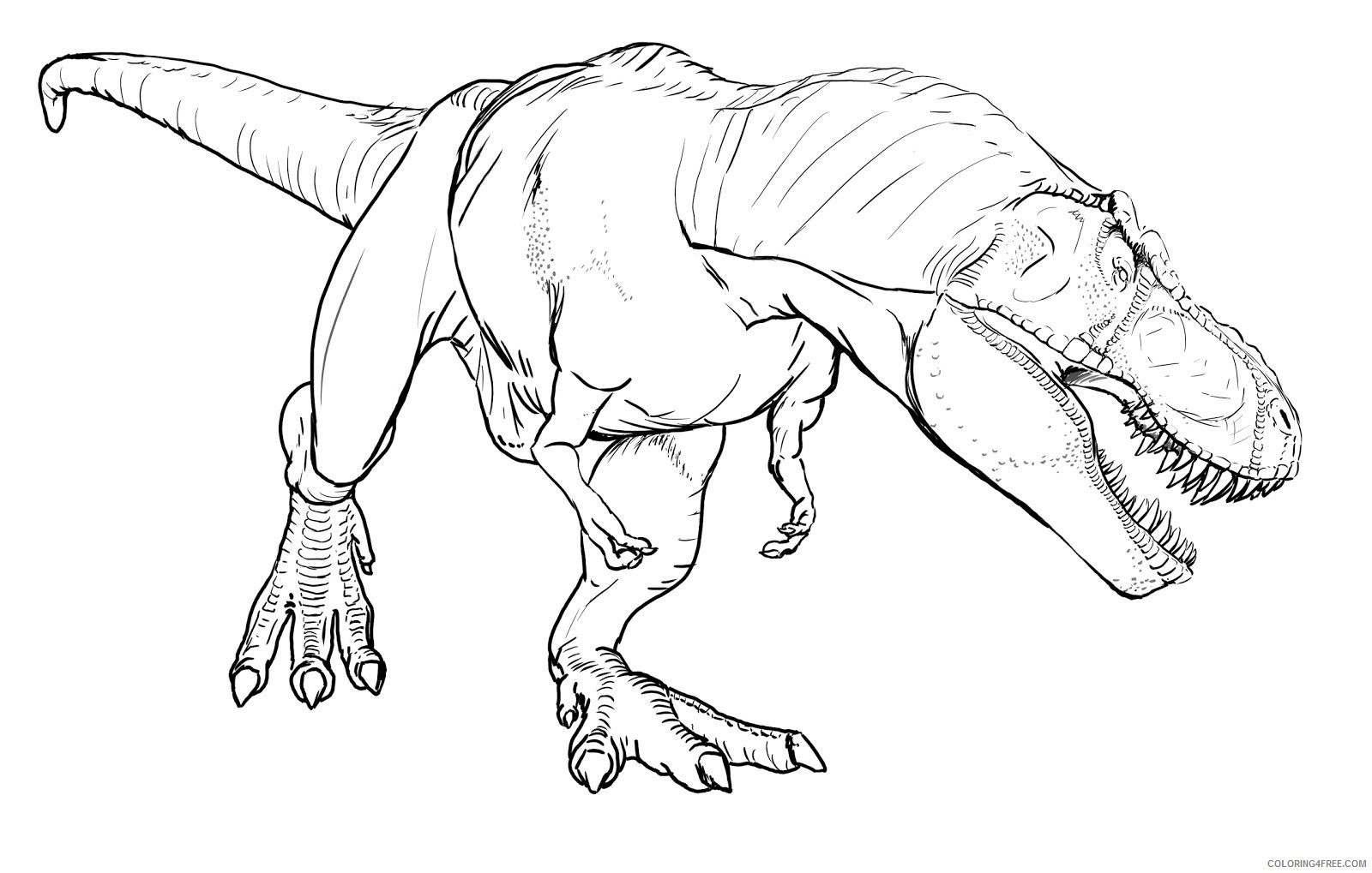 realistic t rex coloring pages Coloring4free