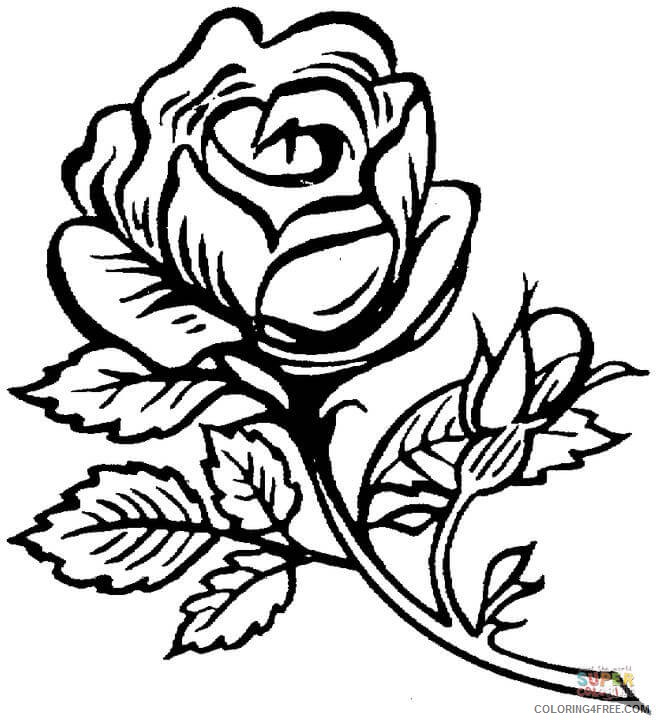 rose coloring pages beautiful flower Coloring4free