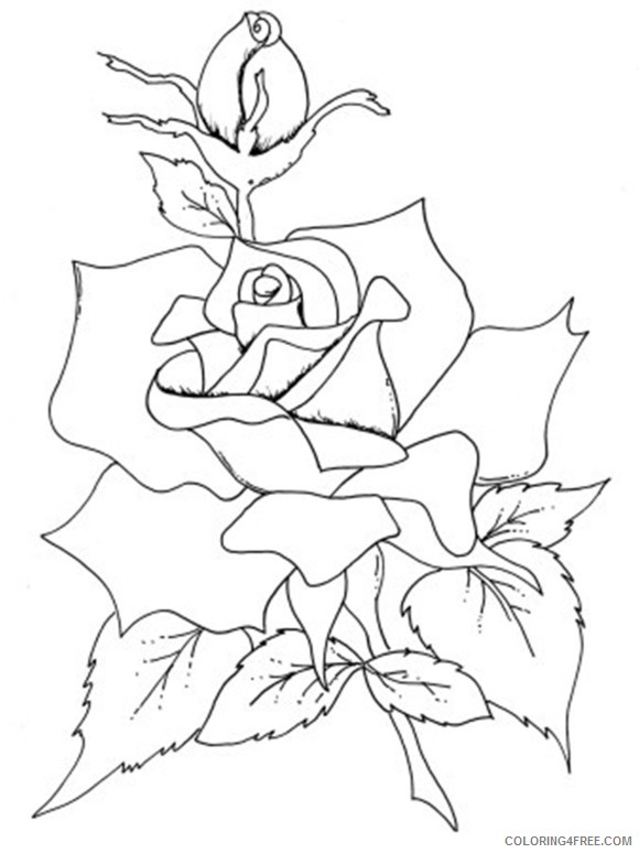 rose coloring pages for adults Coloring4free