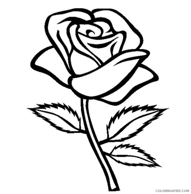 rose coloring pages for kids Coloring4free
