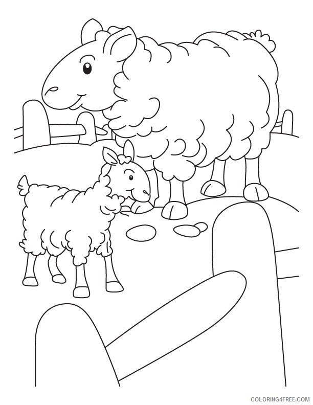 sheep coloring pages for kindergarten Coloring4free