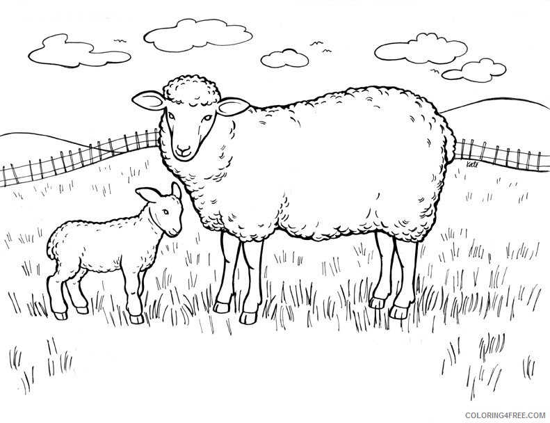 sheep coloring pages in field Coloring4free
