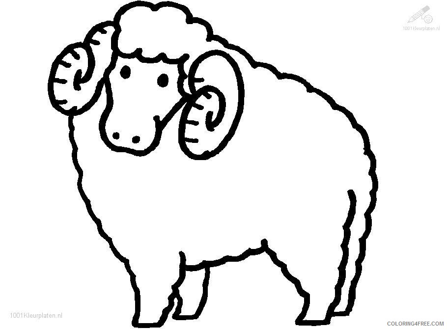 sheep coloring pages with horns Coloring4free