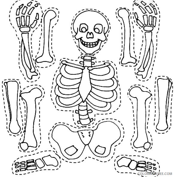skeleton coloring pages anatomy Coloring4free