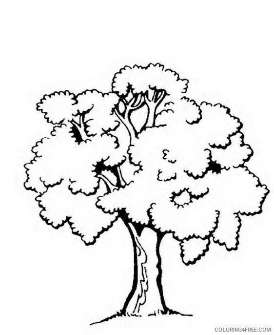 tree coloring pages free printable Coloring4free