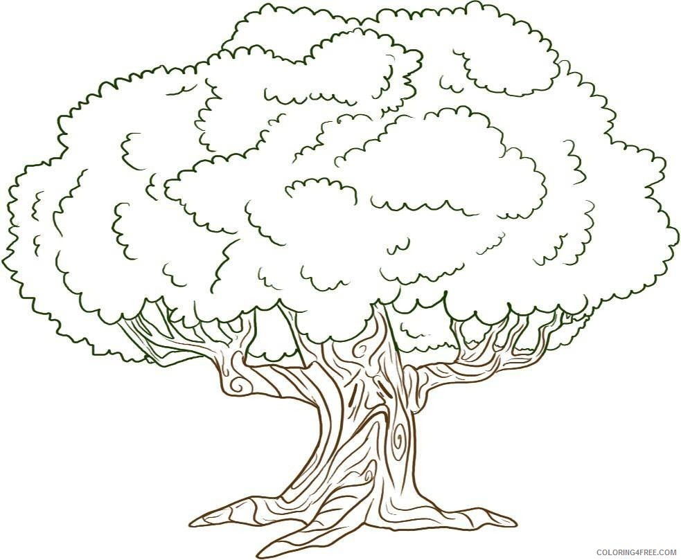 tree coloring pages printable Coloring4free
