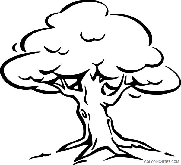 tree coloring pages printable for kids Coloring4free