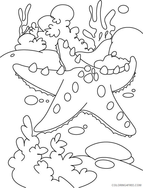under the sea coloring pages starfish Coloring4free
