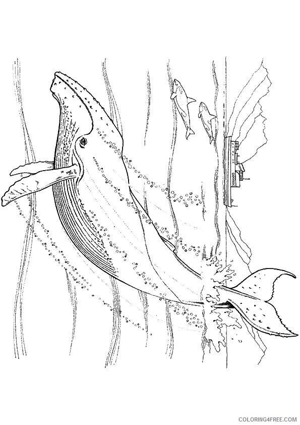 under the sea coloring pages whale Coloring4free