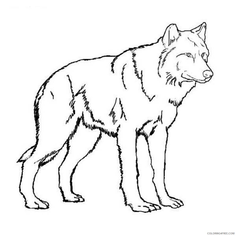 wolf coloring pages free to print Coloring4free