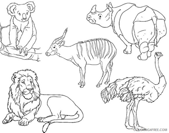 zoo animal coloring pages printable Coloring4free