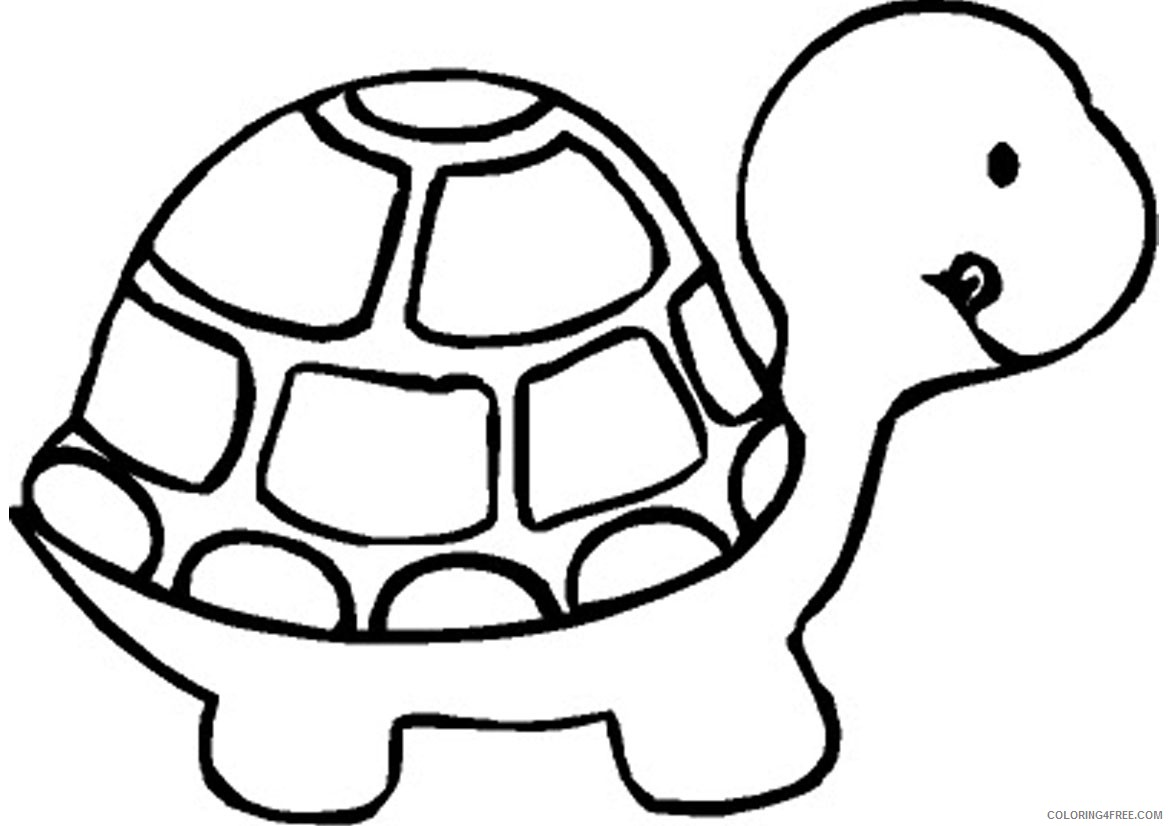 zoo animal coloring pages turtle Coloring4free